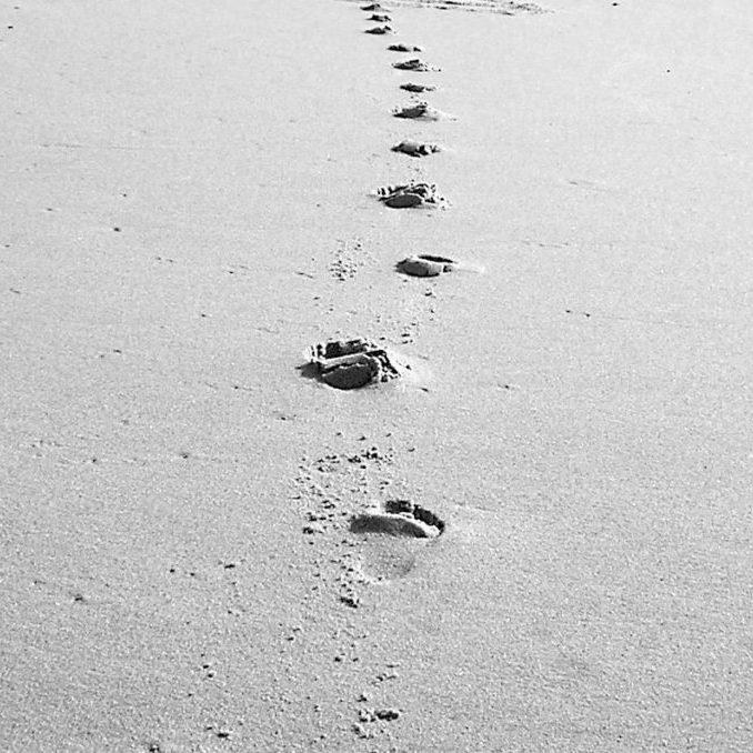 step-by-step-1510168_04
